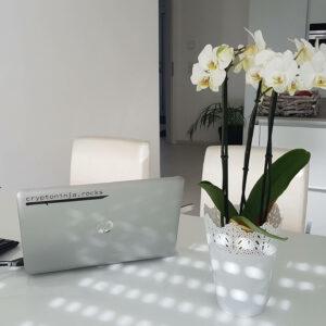 Ein Esszimmer mit einem cryptoninja Notebook und einer Tastatur mit Blick auf die Küchenzeile
